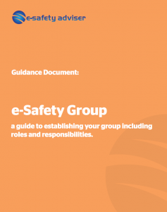 e-Safety Group Screenshot